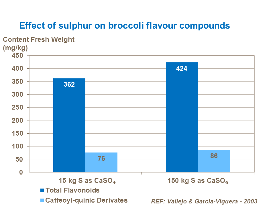 Effect of sulphur on broccoli flavour compounds