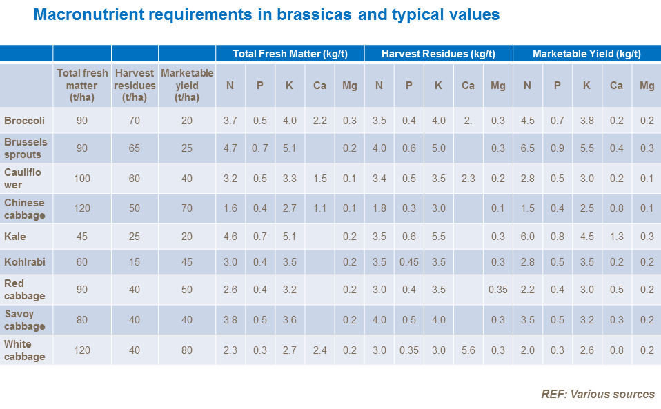 Macronutrient requirements in brassicas and typical values