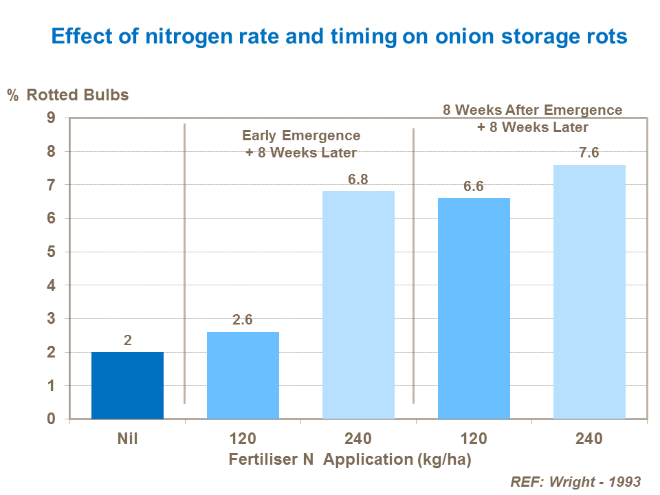 Effect of nitrogen rate and timing on onion storage rots