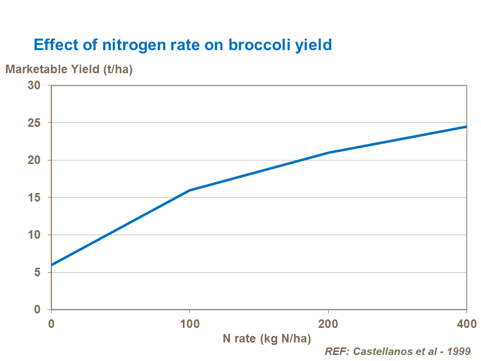 Effect of nitrogen rate on broccoli yield