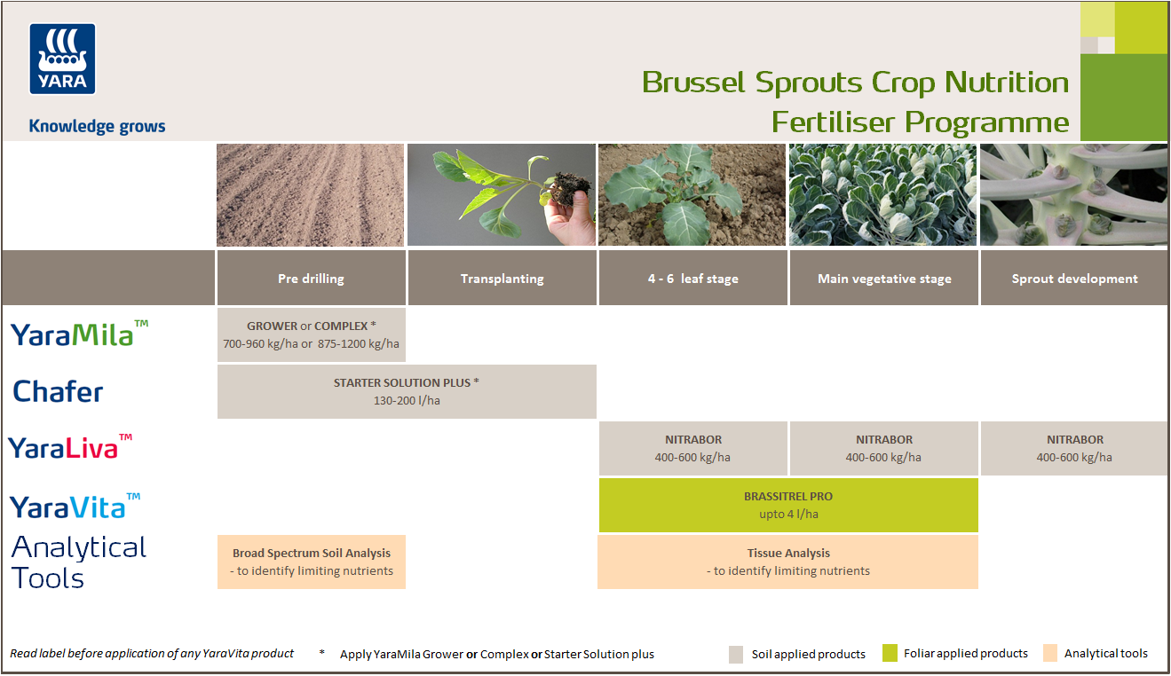 Brussel sprouts crop nutrition programme
